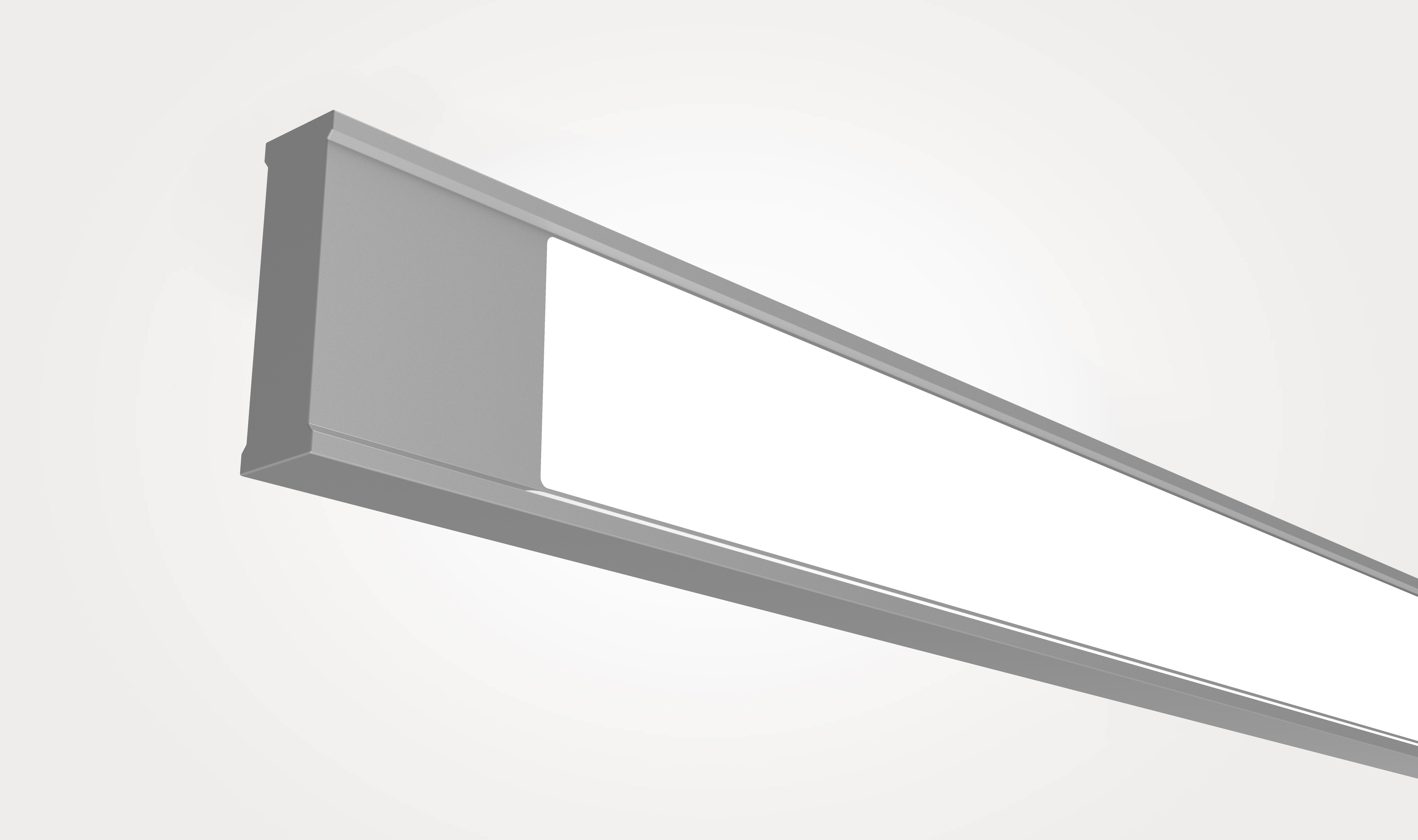 Vertical Wall Wash Suspended Linear_Flat Endcap.jpg