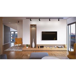 R605L BL_Living Room.jpg