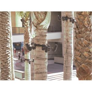 TreeStrap2.jpg