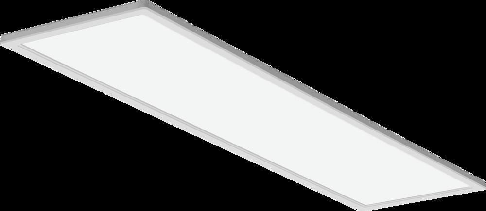EPANL 14_Illuminated_001.png