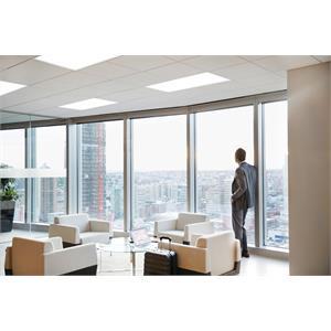 EPANL 24_Office_003.jpeg